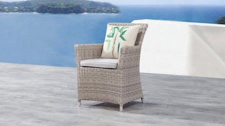 Savannah Outdoor Wicker Dining Chair (set of 2)