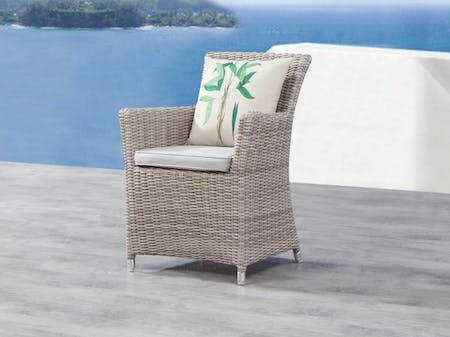 Savannah Outdoor Wicker Dining Chair Set of Two